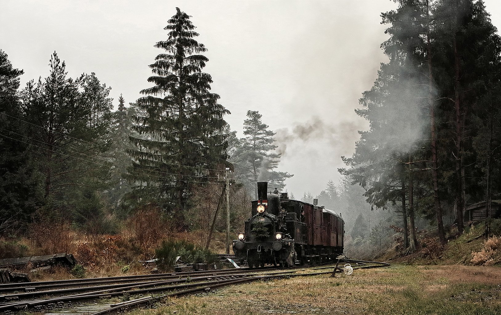 Steam_train 531