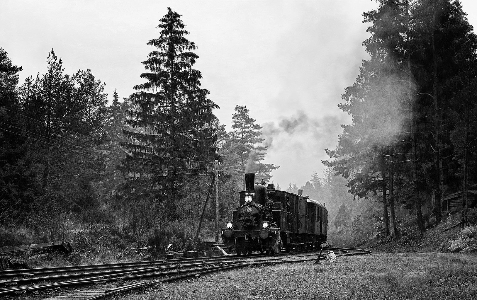 Steam_train 531BW